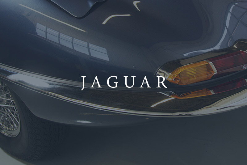 Jaguar Restoration